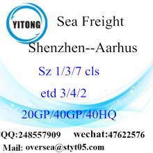 Shenzhen cảng biển vận chuyển hàng hóa vận chuyển đến Aarhus