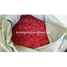 Four Red skin peanuts from china 2014 new crop