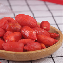 Congelar Berry Goji Berry Fruit