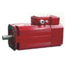 China Industrial Electric Motors Servo Motors Variable