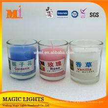 Grands petits récipients en verre de bougies parfumées claires pour la maison