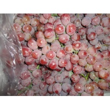 Fresh Good Qulality Red Grape