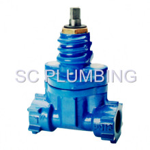 Resilient Seated Gate Valve Screwed Ends (DIN3352 Part 4)