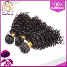 """14 """"Pelo rizado malasia de la Virgen, Extensión perfecta del pelo perfecto de oro del 100%"""