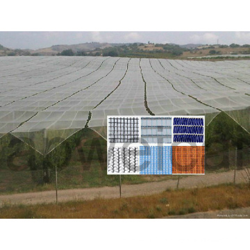 Anti Hail Net для защиты растений, овощей, фруктов и т. Д.