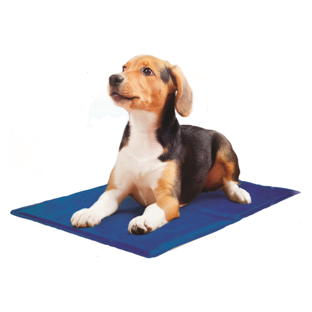 Small Dog Puppy Summer Cooling Gel Mat