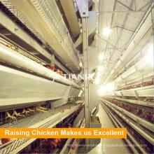 Équipement utilisé de moulin d'alimentation de volaille de système de cage de poulet de Tianrui