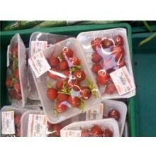 Puntería plástica disponible barata Shandong de la categoría alimenticia de la venta directa de la fábrica de Guoliang Brande