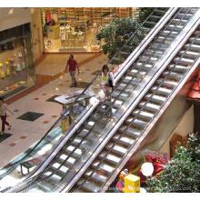 Escalator de type intérieur