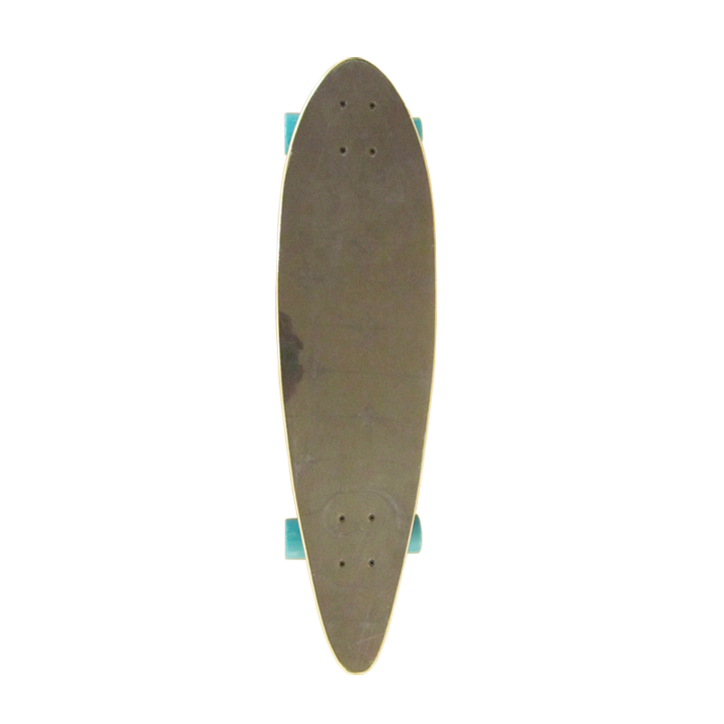 Skating Street Surfing Board Long Skate Board