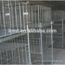Cage de caille de 5 rangées H type à vendre