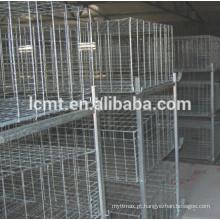 5 tipo de gaiola de codorna H tipo para venda