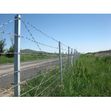 Galvanized Barbed Wire Fence for Road Fence