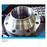 Raise Face A182 F304/Ss304 Welding Neck Flanges