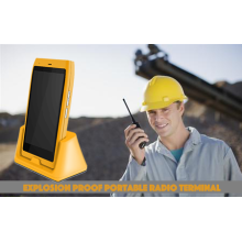 Explosion-Proof Kofferradio-Terminal