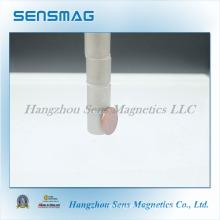 Индивидуальный постоянный магнит Sm2co17 с редкоземельной поверхностью с RoHS