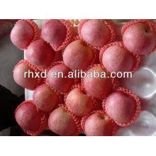 2013 nueva cosecha mejor calidad Fuji Apple