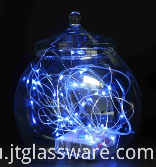Handblown Glass Terrarium Container Plant Flower Decor 002