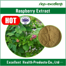 Palmleaf Raspberry Fruit Extract