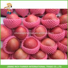 Exporter un délicieux jus de fruits chinois de qualité supérieure au rouge Fresh Fuji Apple