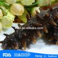 China seafood frozen sea cucumber