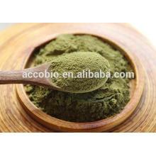 Pure Natural Herbal Extract bulk moringa leaf extract powder