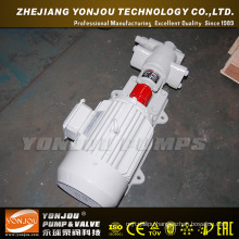 Yonjou Oil Transfer Gear Pump (KCB)