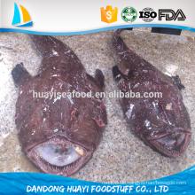 Neue Landung Seeteufel Fisch sauber gefroren ganze Seeteufel