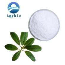 Supply High Quality Ursolic Acid powder CAS 77-52-1