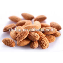 Competitive Raw Bitter Almond Prices