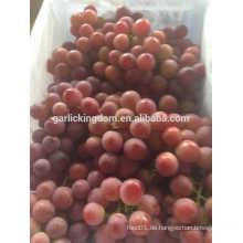 Rote Trauben verkaufen