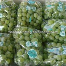 2012 урожай зеленый виноград винограда
