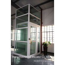 Panoramic shaft glass home elevator