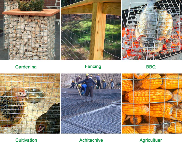 wire mesh application