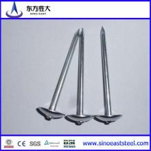 Clavos de hierro Q195 o Q235