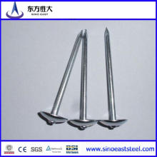 Q195 or Q235 Iron Nails