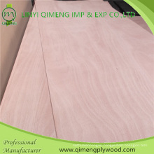 Poplar Material Okoume Door Skin Plywood in Hot Sale