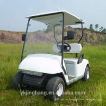 Carro de golf con motor de 2 plazas 250CC