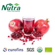 100% Organic Pomegranate Juice Concentrate Powder