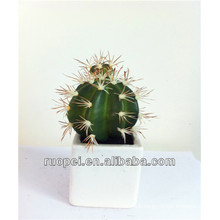 Potted Artificial Cactus Plant For Indoor Decoration