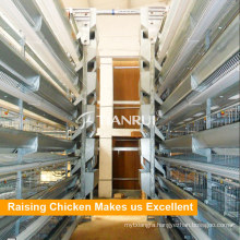 Tianrui Automatic H Frame 6 Tiers Stacked Layer Cages