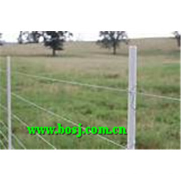 2.5meters Hot DIP Galvanized Poles for Vineyard Roll Forming Machine Supplier Spain