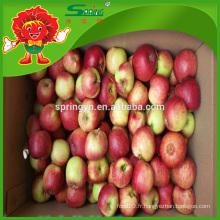 Le type de pomme rouge Fuji se vend directement du fermier