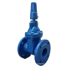 BS5163 Flanged Resilient Gate Valve with Nut Operator