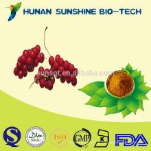 Бесплатный образец китайского Magnoliavine фрукты экстракт для травяной медицины для пениса