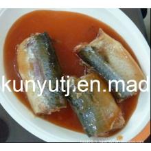 Sardines en conserve en sauce tomate
