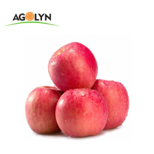 Chinese 2019 New Crop Red Fuji Apple for sale