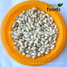 2014 nova safra shandong tamanho grande branqueada preço de amendoim
