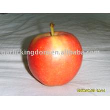 Venta 2013 gala apple