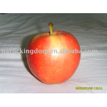 Продать яблочное яблоко в 2013 году